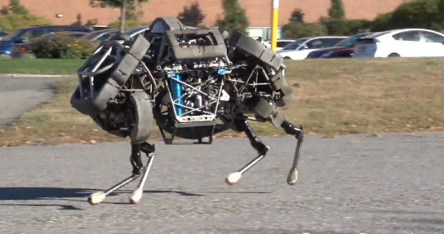 wild cat boston dynamics