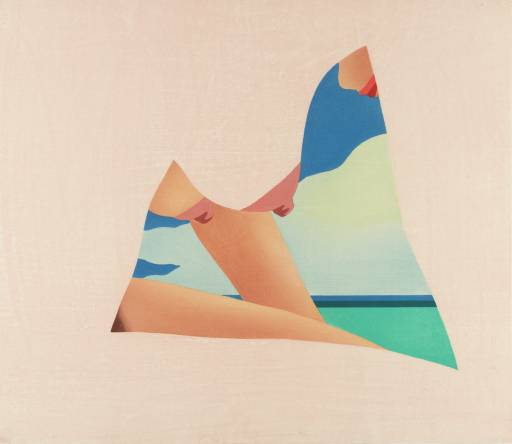 Tom-Wesselmann-pop-art-2