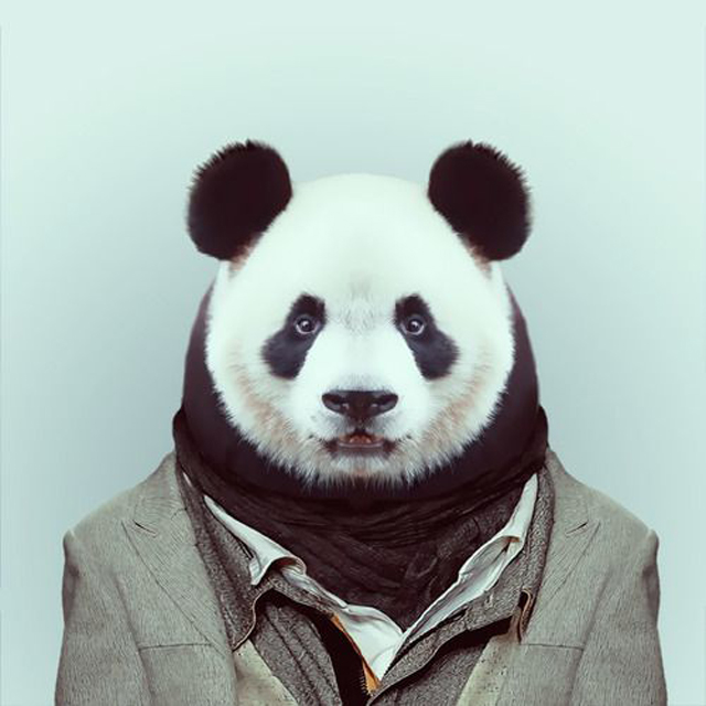 Fashion-Zoo-Animals10