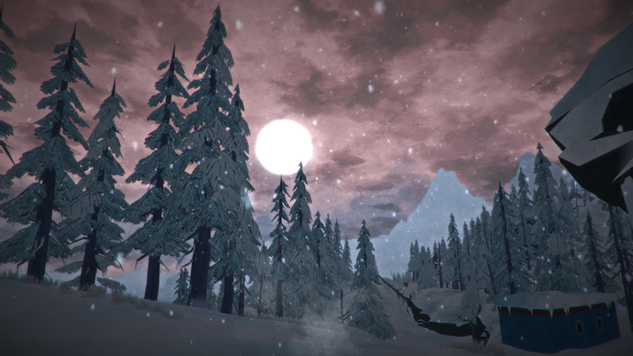 The Long Dark jeu