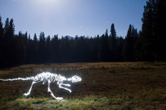Dinosaures light painting