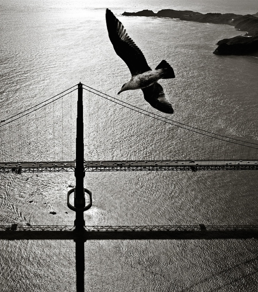 Fred Lyon photo San Francisco